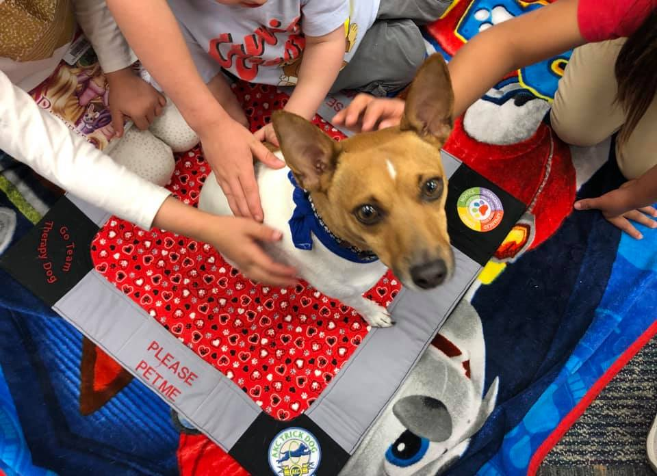 Patrons with Sky, one of Rockrimmon Library's Paws to Read dog