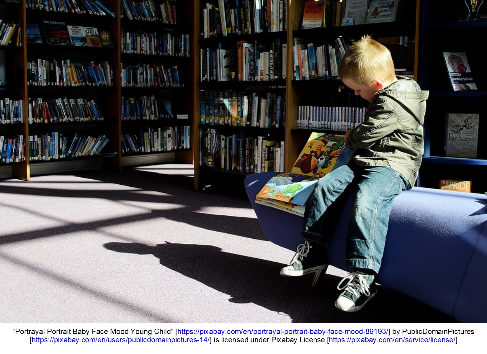 Child sitting and reading a book