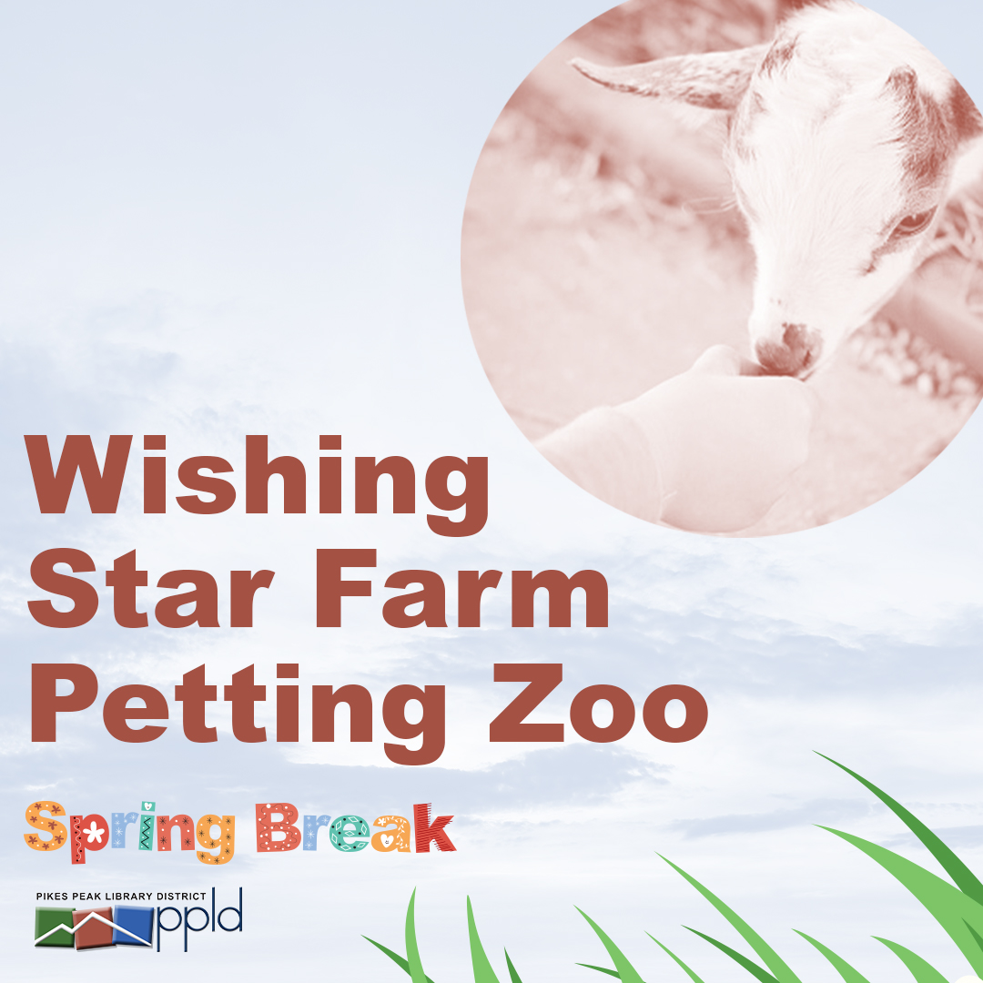 Wishing Star Farm Petting Zoo