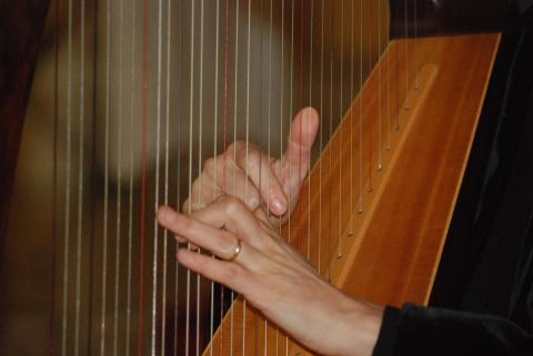 Person playing harp